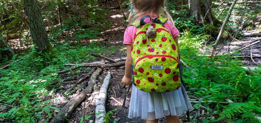 Czy można chodzić do lasu?