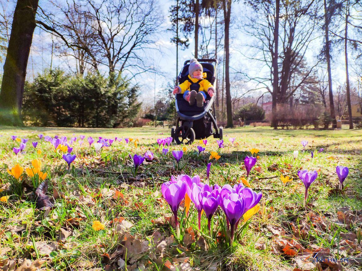 Nowy_wozek_Thule_spring_test_zbierajsie (15)