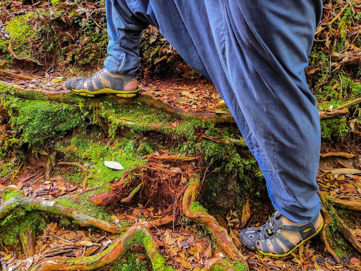w sandałach trekingowych keen zochroną palców spokojnie można pójść dolasu deszczowego