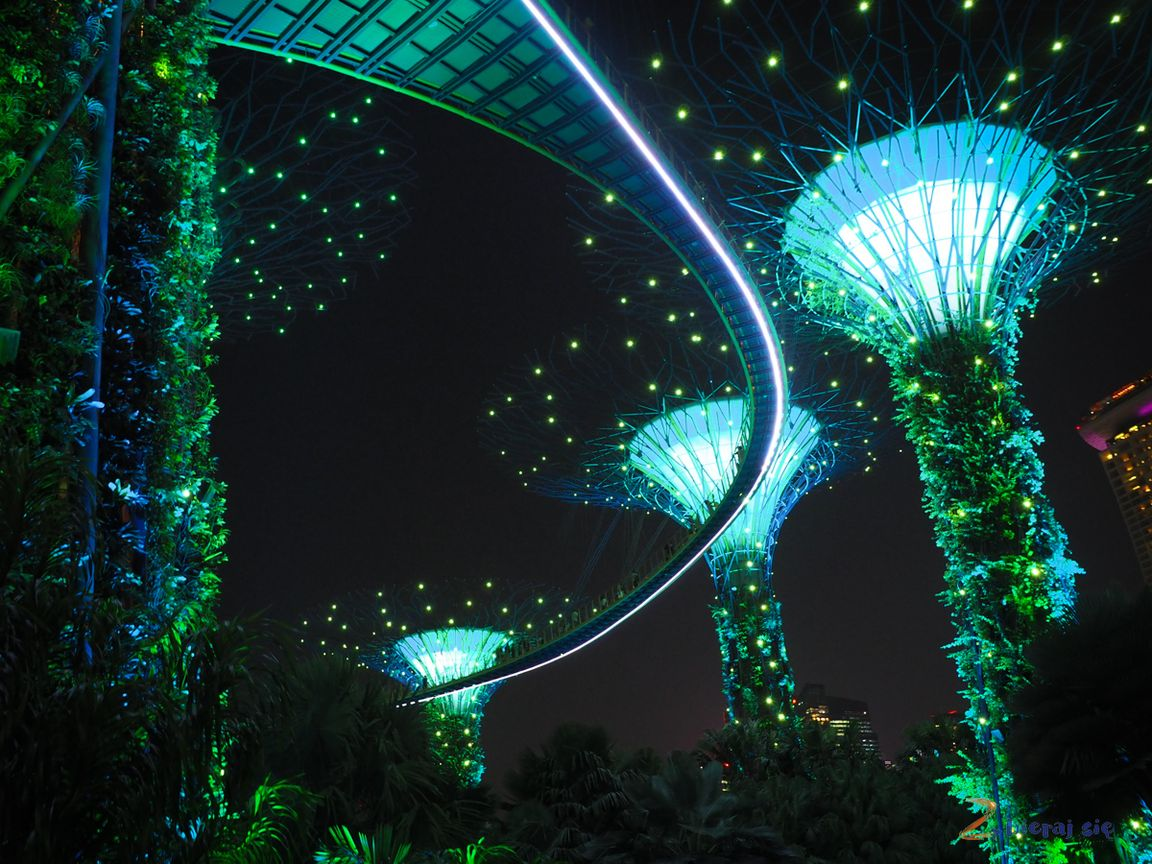 singapur-plan-zwiedzania-zbierajsie_supertree_noca_gardes_by_the_bay