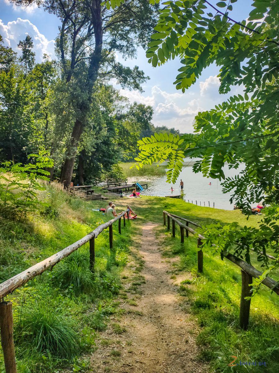 dzika_plaza_jezioro_lubniewsko_lubniewice_lubuskie_zbierajsie (1)