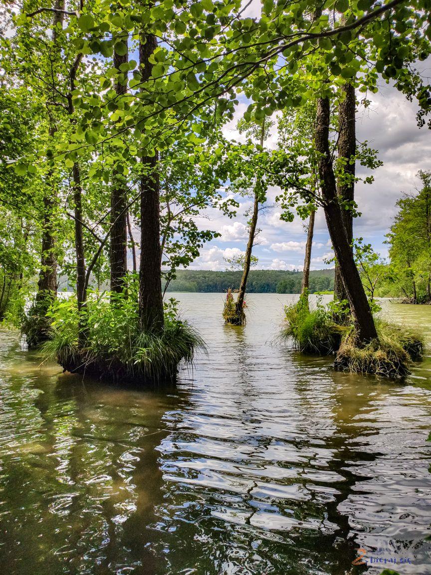 https://zbierajsie.pl/wp-content/uploads/2020/08/lubuskie_jeziora_lubniewice_jezioro_lubniewsko-zbierajsie-3.jpg