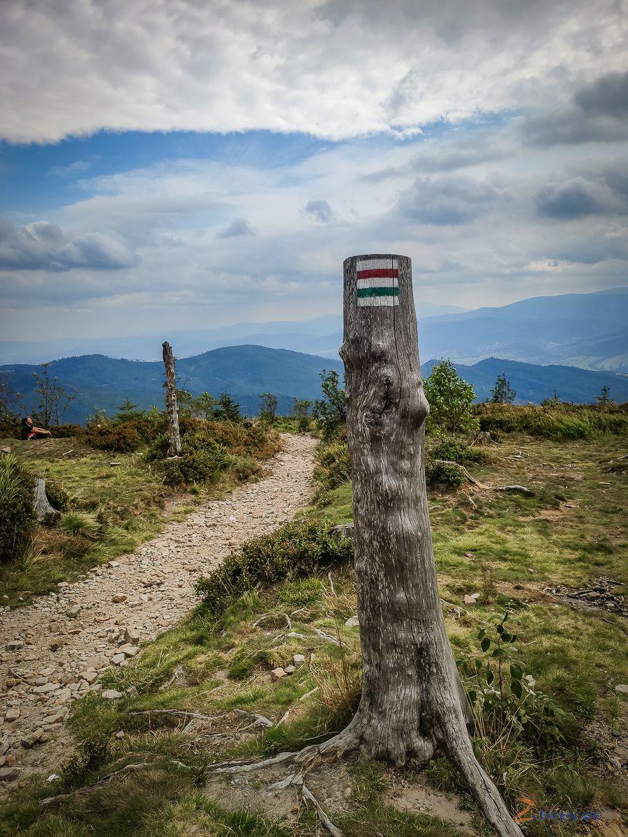 szlak wBeskidzie Śląskim