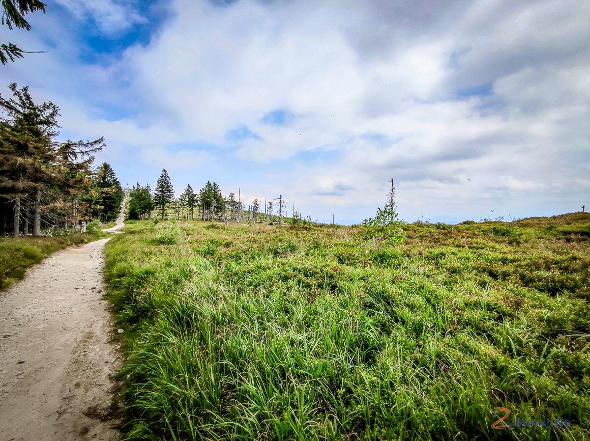 Barania Góra zdziećmi szlak