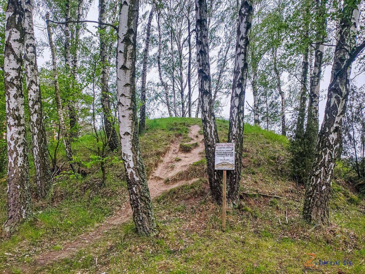 zaleczanski_park_krajobrazowy_zbierajsie_kajakiem_rowerem_pieszo-autem_szlaki_kurhany_ksiazece