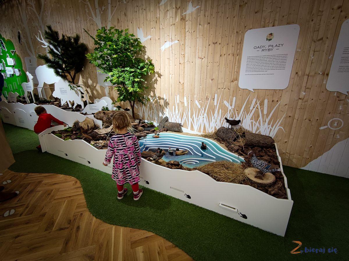 atrakcje dla dzieci wKarpaczu - Muzeum Tajemniczy Las