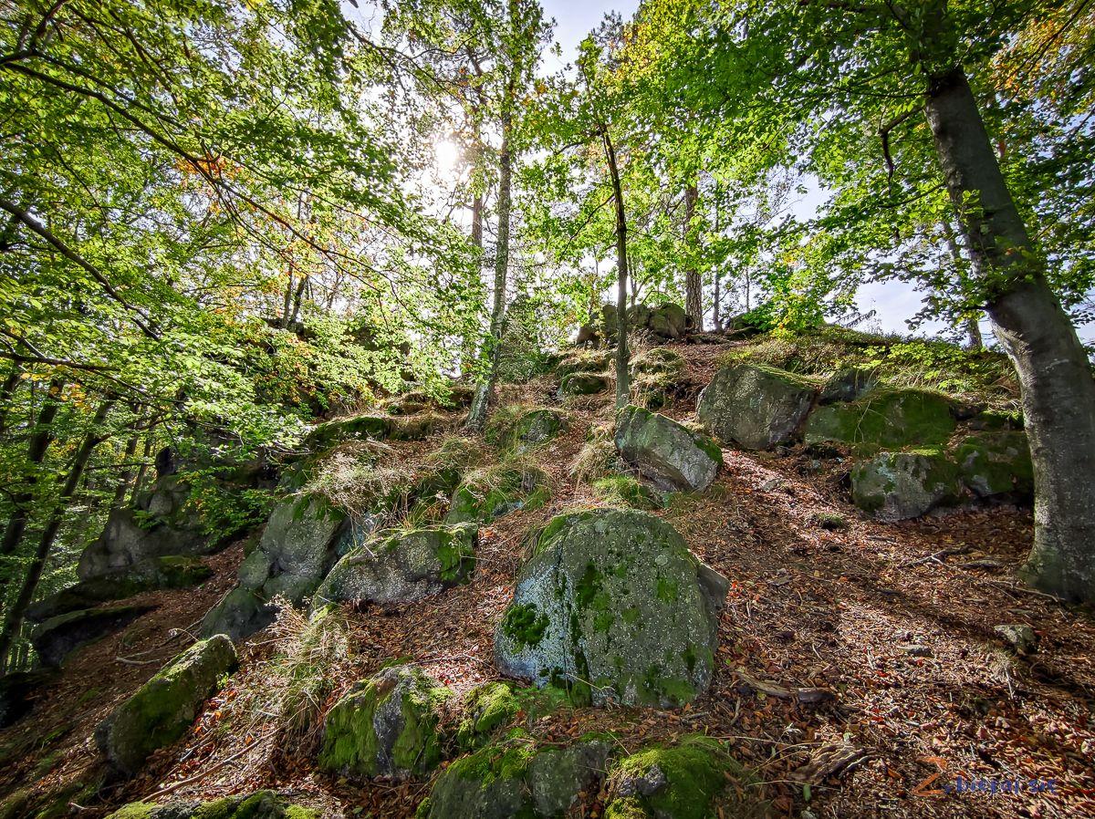 gora-gapy-park-krajobrazowy-doliny-bobru-jelenia-gora-zbierajsie (98)