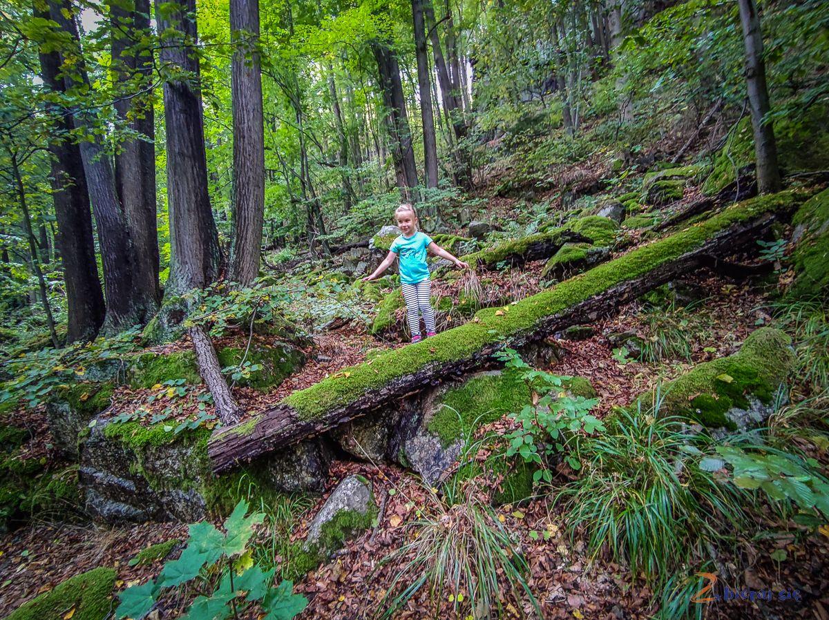 park-krajobrazowy-doliny-bobru-jelenia-gora-zbierajsie (103)
