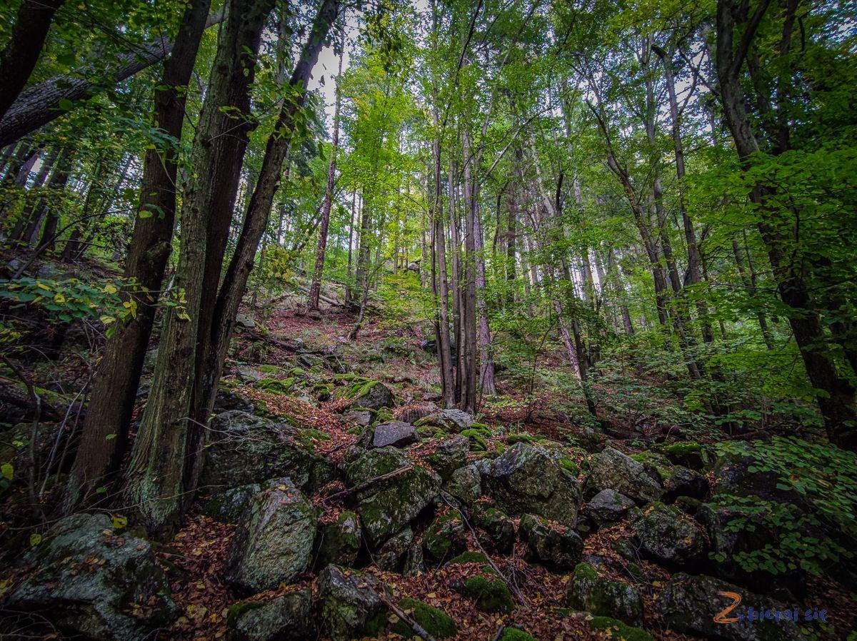 park-krajobrazowy-doliny-bobru-jelenia-gora-zbierajsie (20)