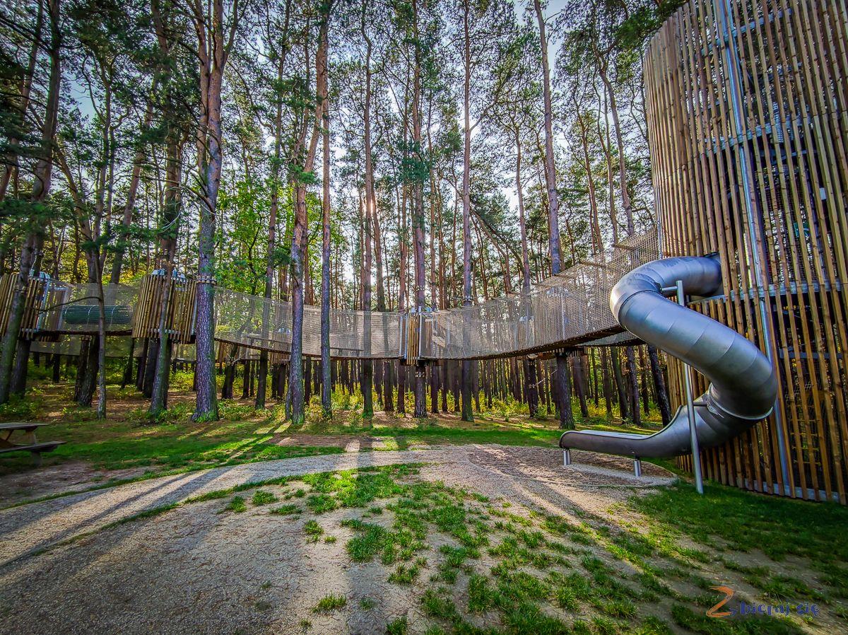 Parki wLubinie: Park leśny- Park linowy wLubinie