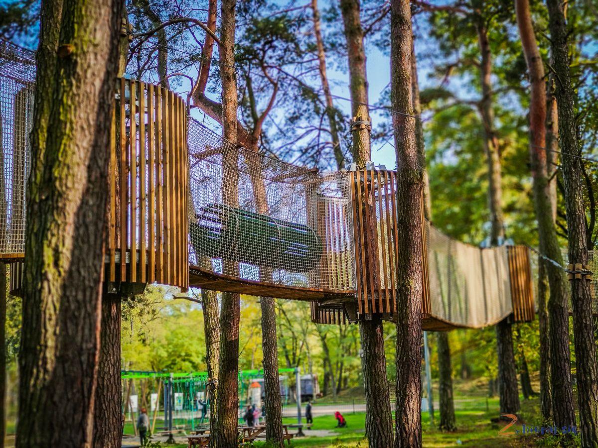 Parki wLubinie: Park leśny wLubinie - Park Linowy wLubinie