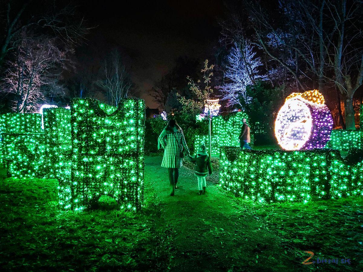 labirynt - Park Iluminacji wZamku Topacz