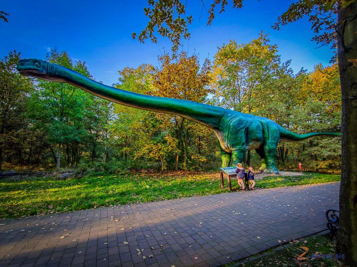 Park Wrocławski wLubinie _ Park Dinozaurów wLubinie