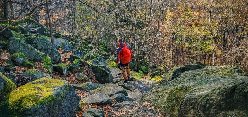 TOP_najladniejszy szlak na ślężę niebieski - zbierajsie (38)