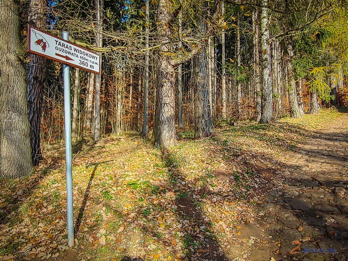 co-zobaczyc-w-okolicy-radkowa-w-gorach-stolowych-zbierajsie (13)