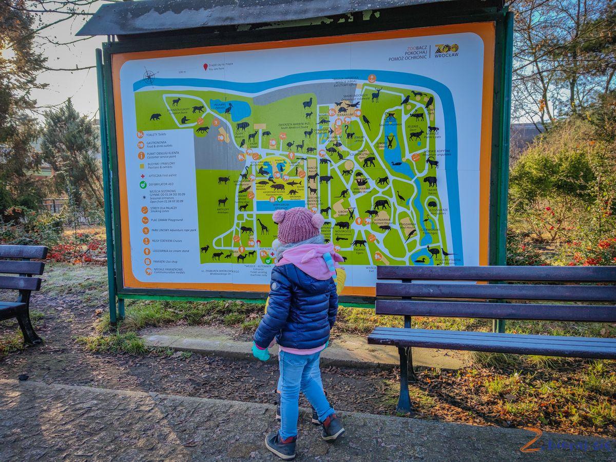 Zoo-Wroclaw-zima-zbierajsie (28)