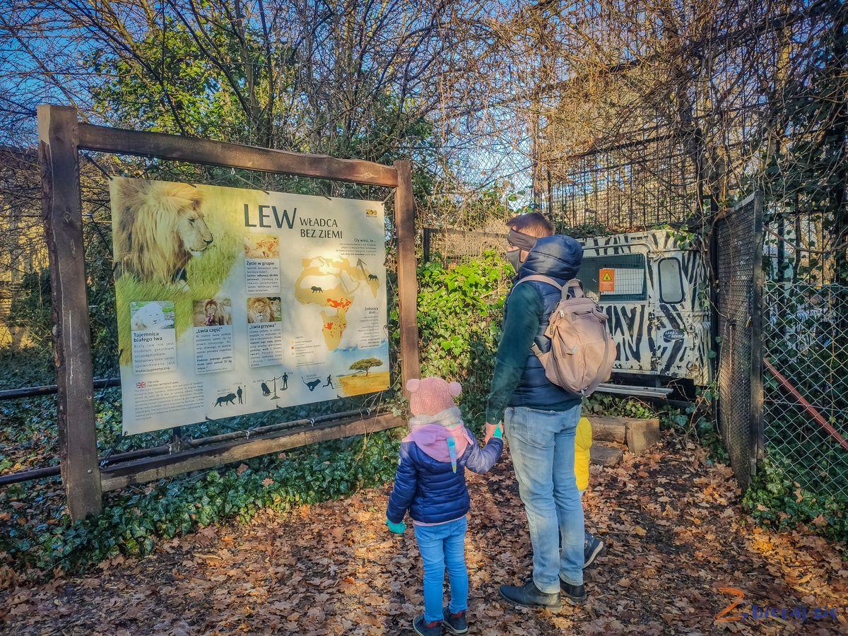 Zoo-Wroclaw-zima-zbierajsie (33)