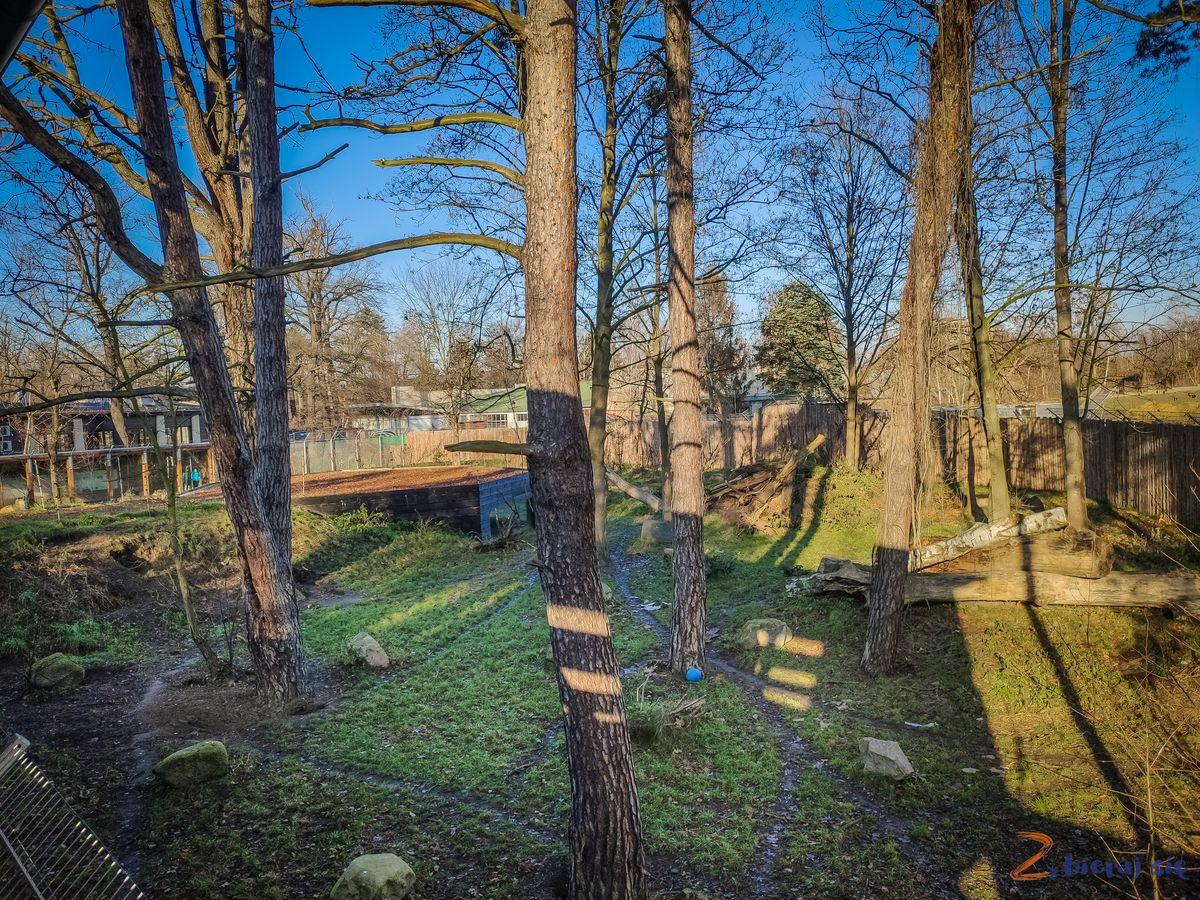Zoo-Wroclaw-zima-zbierajsie (57)