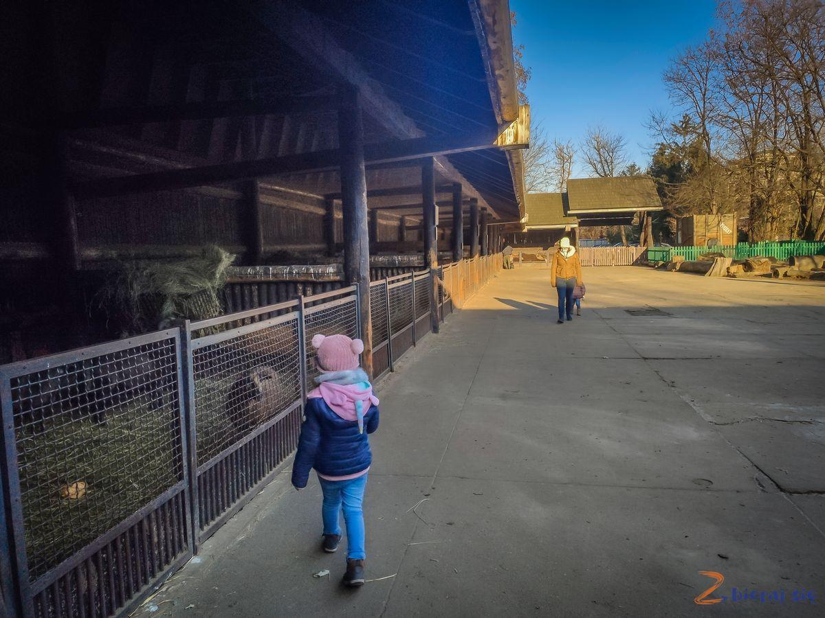 Zoo-Wroclaw-zima-zbierajsie (81)