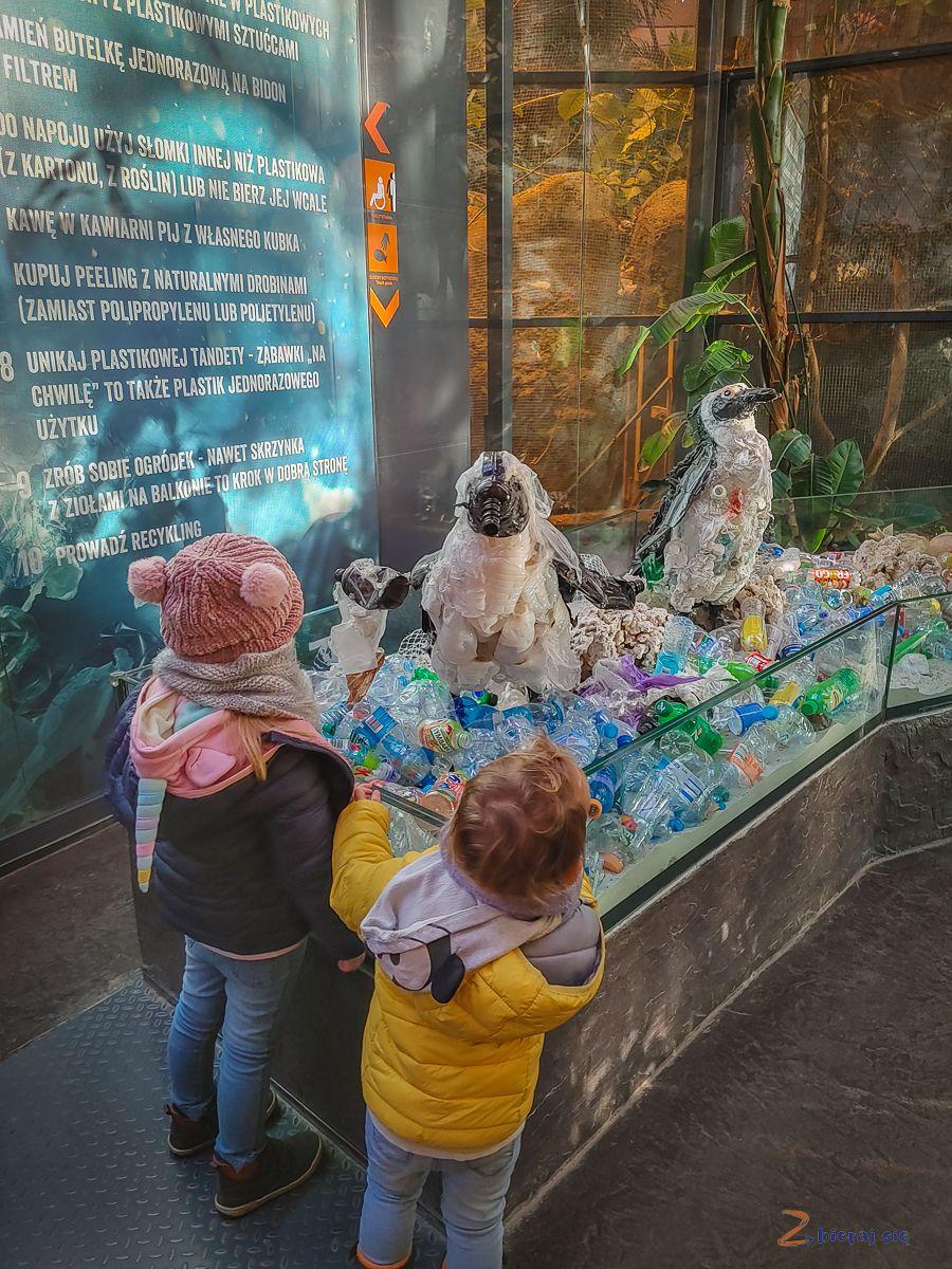 Zoo-Wroclaw-zima-zbierajsie