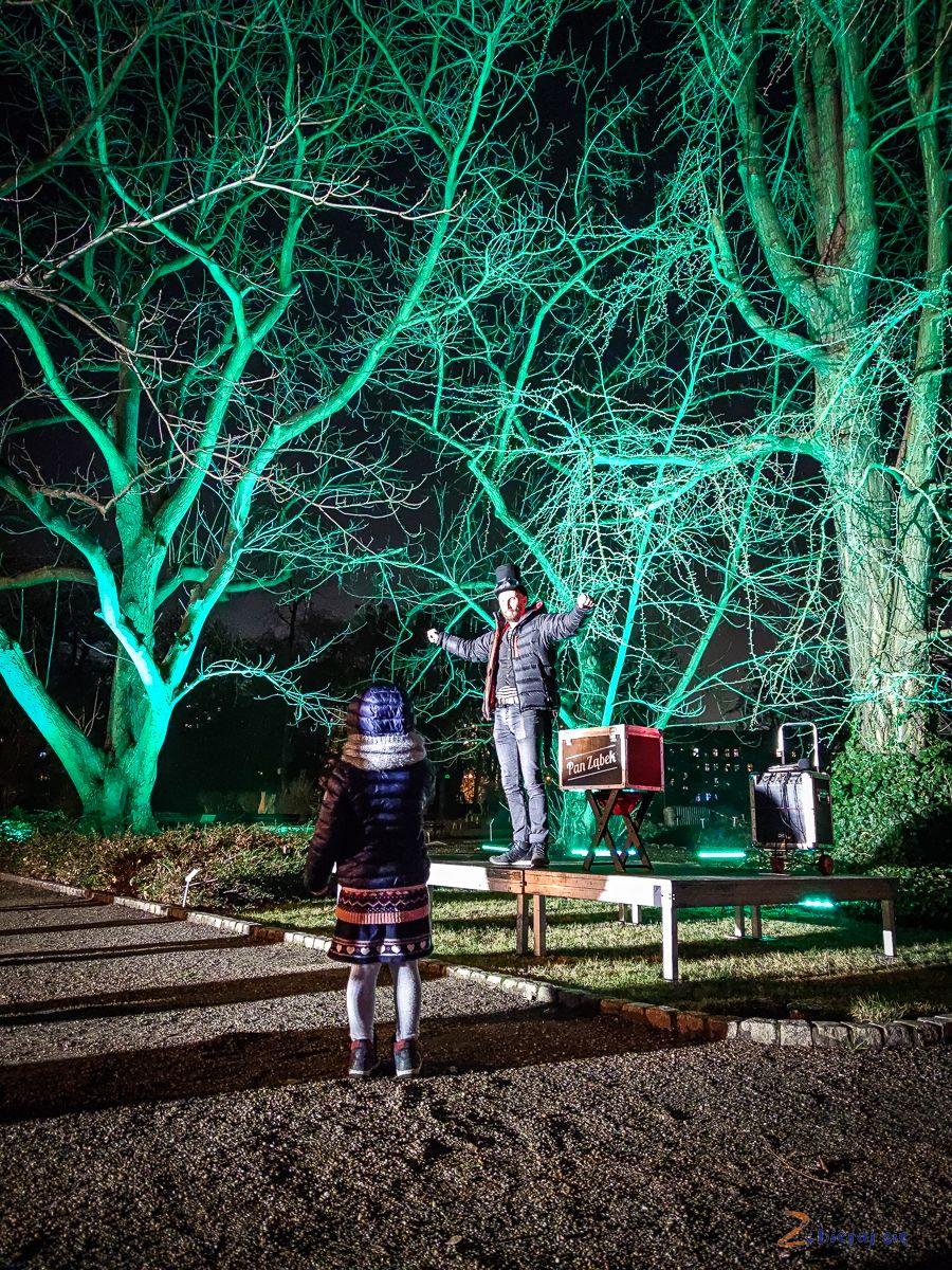 wroclaw-oświetlony Ogród Botaniczny-swiatlogrod-zbierajsie (26)