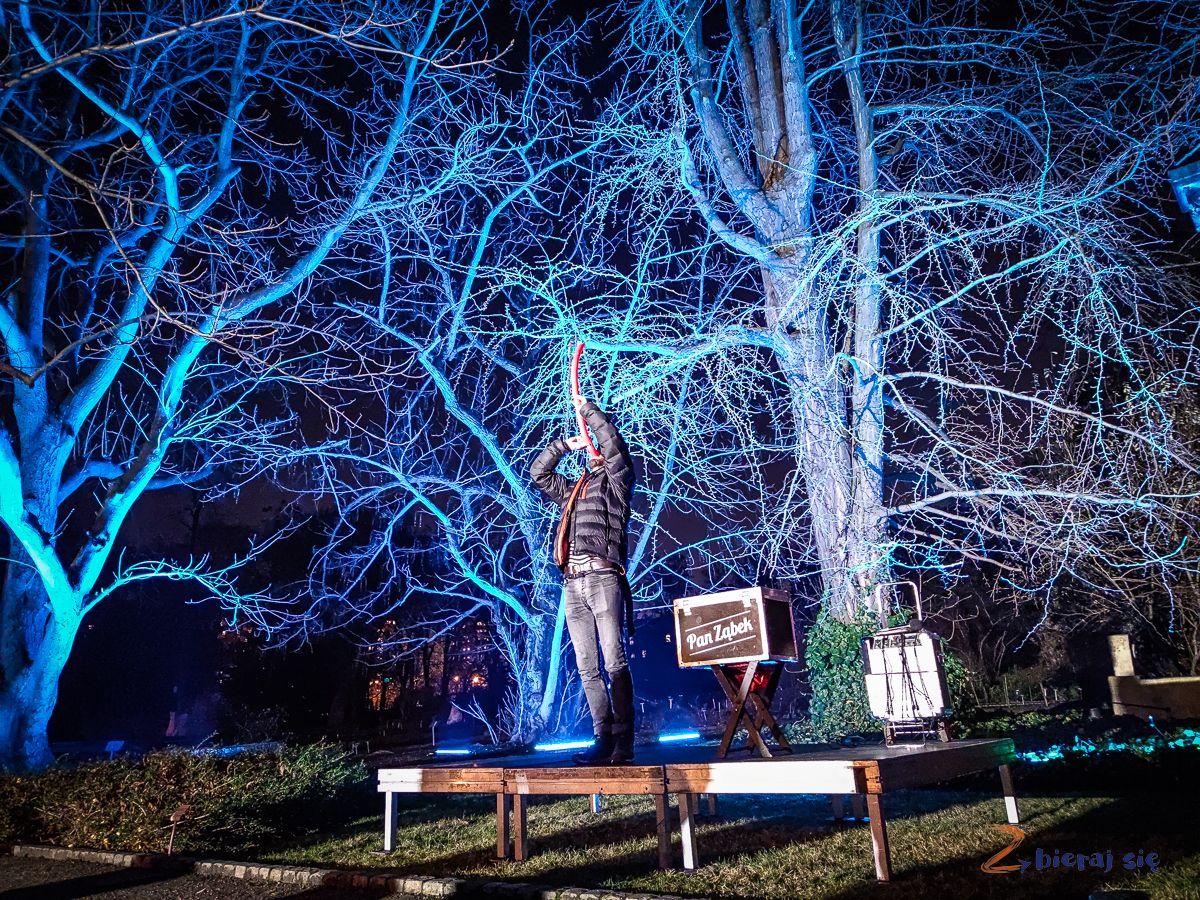 wroclaw-oświetlony Ogród Botaniczny-swiatlogrod-zbierajsie (28)