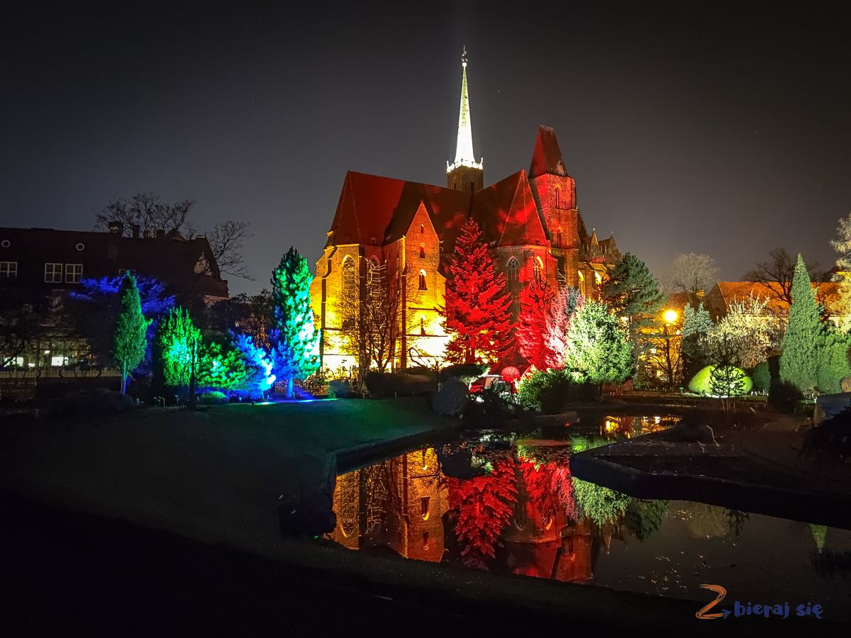 wroclaw-oświetlony Ogród Botaniczny-swiatlogrod-zbierajsie (49)