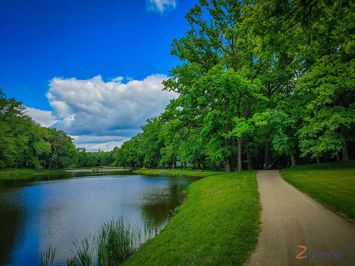 Co zobaczyć wSycowie - Park Miejski wSycowie (3)