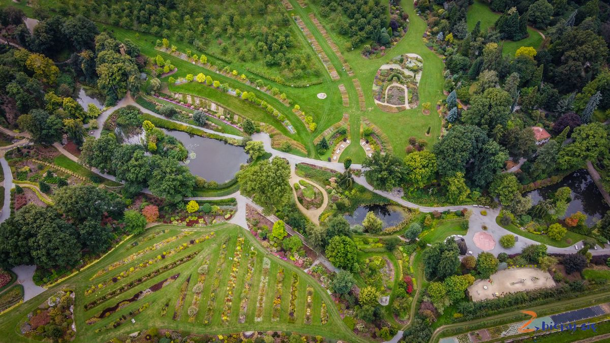 Arboretum Wojsławice zlotu ptaka