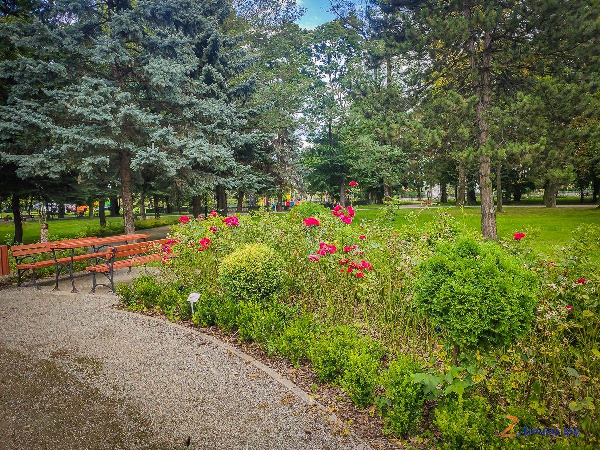 Park miejski wBielawie